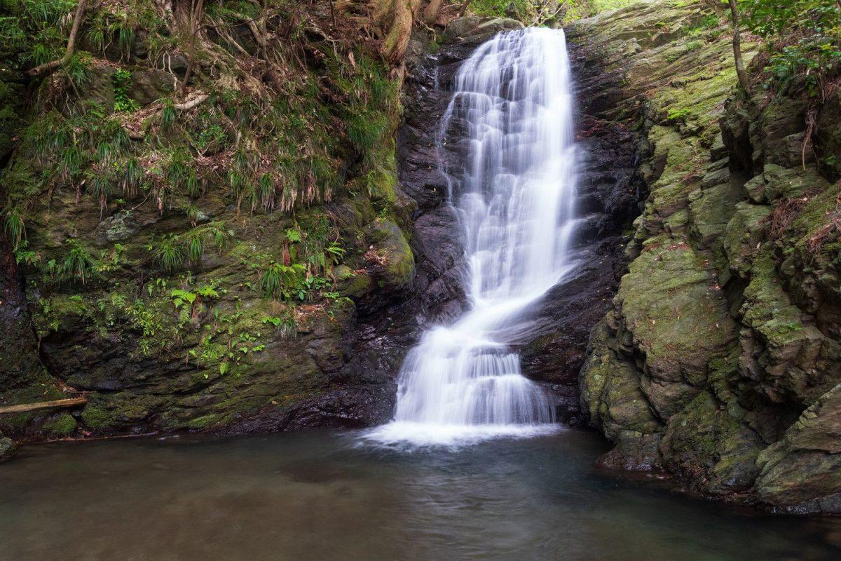 Naturbild von einem Wasserfall mit grünen Pflanzen ringsum.