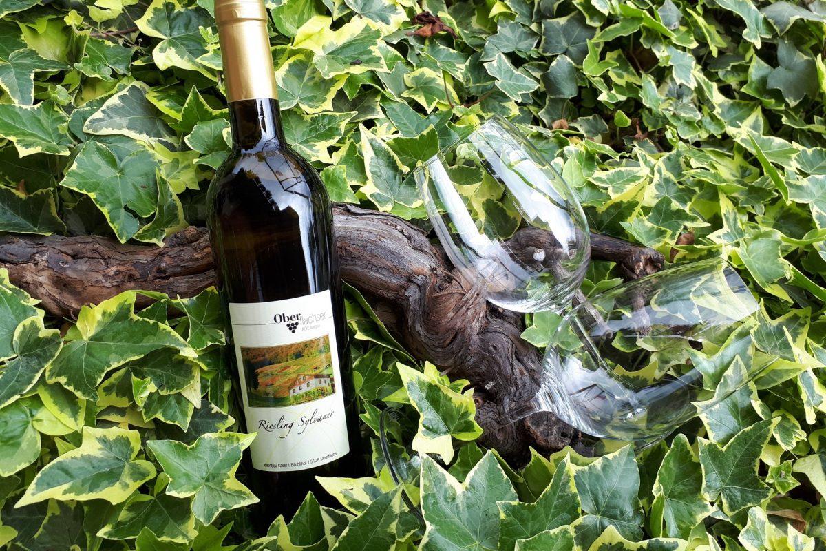 Weinetikette auf einer Weinflasche mit einem Weinglas daneben.